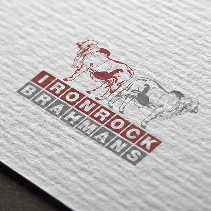 logo design logan village ironrock