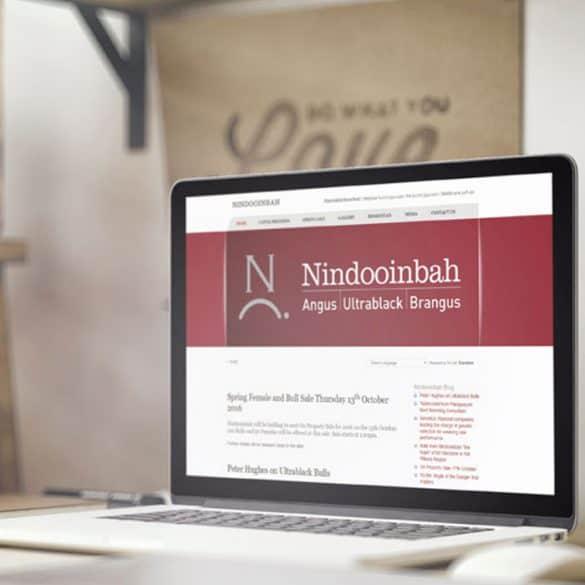 Nindooinbah beef producer website development