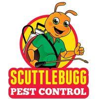 """alt=""""pest control logo design"""""""